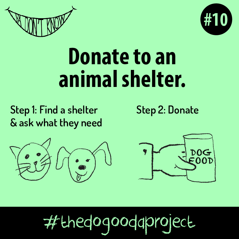 The Do Gooda Project 10